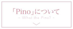 モデルスタジオPino(ピノ)について